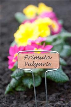 Etiquettes a planter en cuivre 16 cm 6 pc