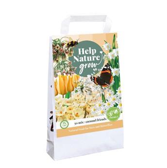 Bulbes mix Help nature Abeilles et papillons Caramel * 50 pc
