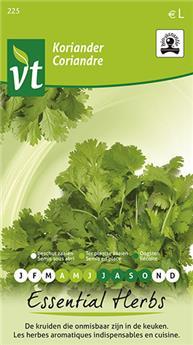 VT coriandre Bio