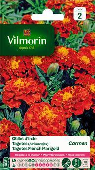 Oeillet d´Inde Miniature varié - S2 (Vilm)