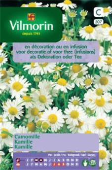 Camomille - SC (Vilm)