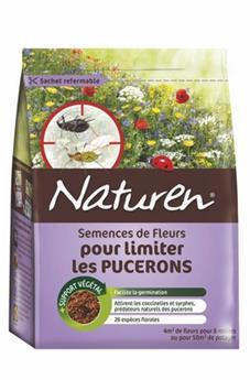 Fleurs pour limiter les puçerons  ** Attractives pour les coccinelles et Syrphes: prédateurs naturels. **