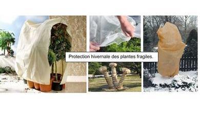 Protection hivernale des végétaux